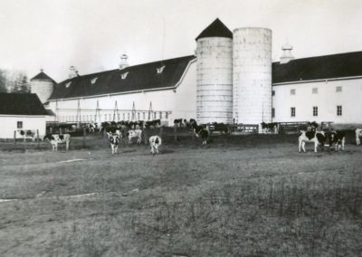 St Joe Farm History