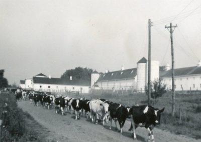 St Joe Farm History